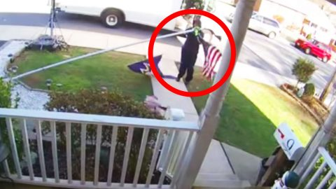 Stranger's Fallen Flag Shown Honor By Marine Turned FedEx Driver | Frontline Videos